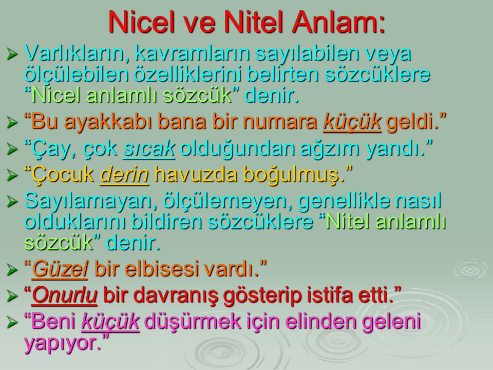 """Nicel ve Nitel Anlam:  Varlıkların, kavramların sayılabilen veya ölçülebilen özelliklerini belirten sözcüklere """"Nicel anlamlı sözcük"""" denir.  """"Bu ay"""
