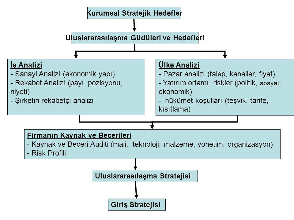 Giriş Stratejisi Geliştirme Stratejik Yaklaşım Sofistike uluslararasılaşma güdüleri (Pazar ve kaynak araştırma, konumlandırma) Gelişmiş Yönetim Anlayı