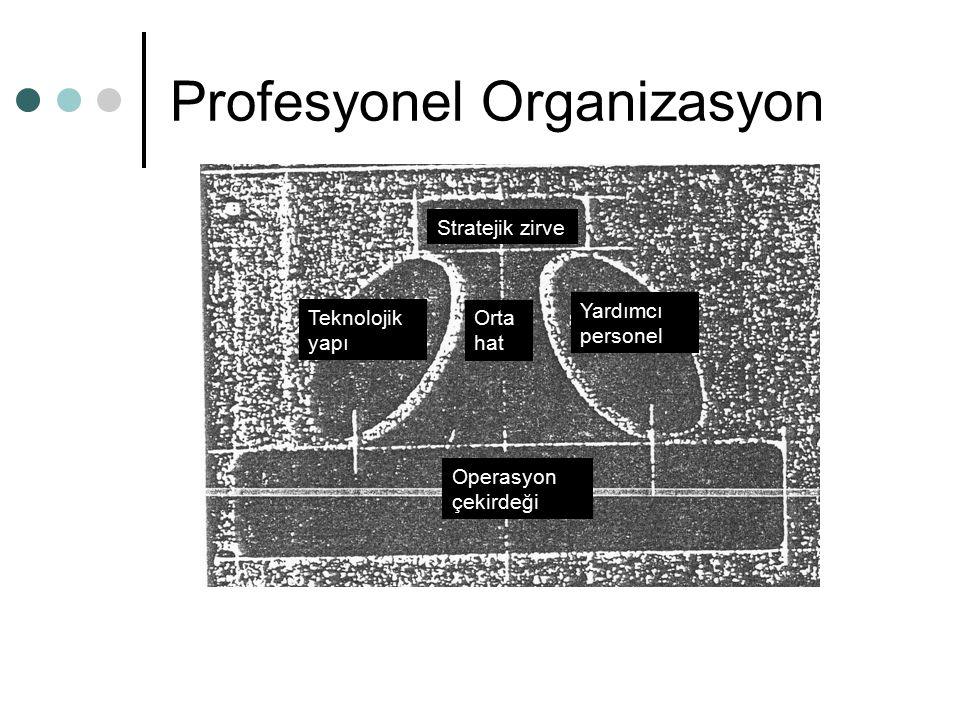 Profesyonel Organizasyon Teknolojik yapı Yardımcı personel Orta hat Stratejik zirve Operasyon çekirdeği