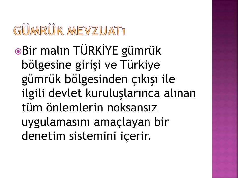  Bir malın TÜRKİYE gümrük bölgesine girişi ve Türkiye gümrük bölgesinden çıkışı ile ilgili devlet kuruluşlarınca alınan tüm önlemlerin noksansız uygu
