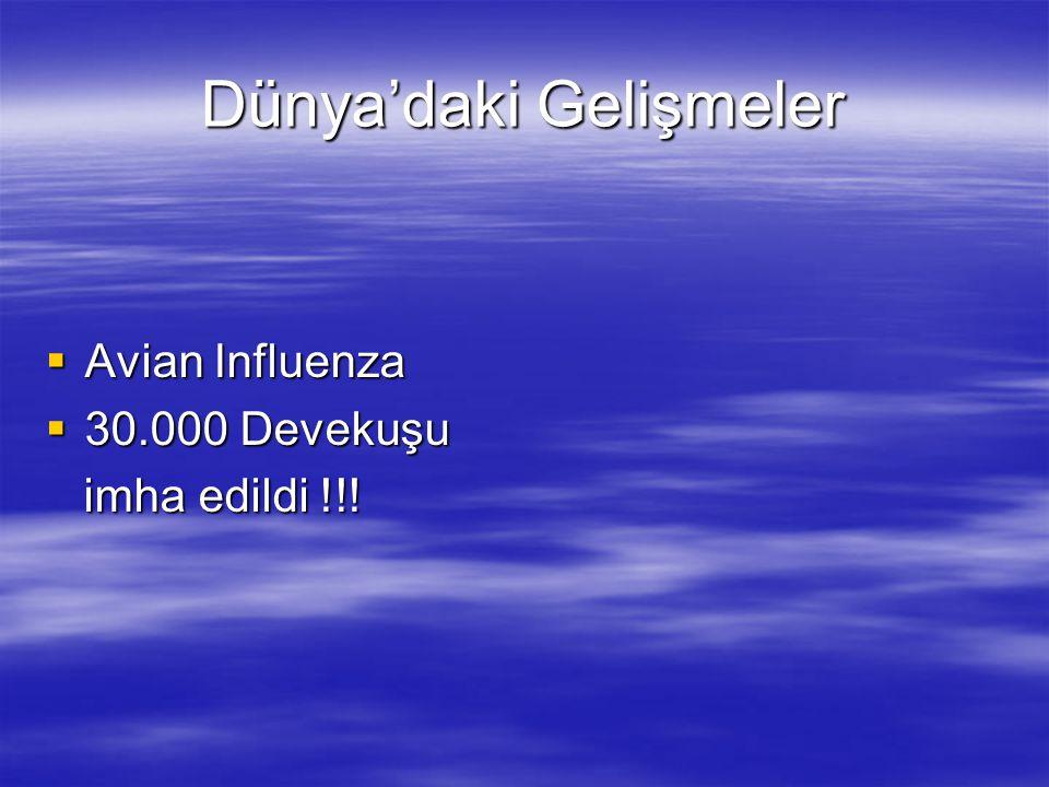 Dünya'daki Gelişmeler  Avian Influenza  30.000 Devekuşu imha edildi !!! imha edildi !!!