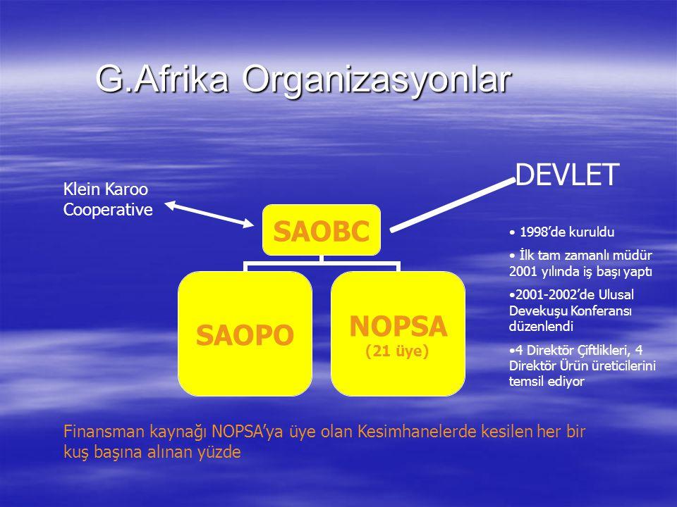 G.Afrika Organizasyonlar G.Afrika Organizasyonlar DEVLET Klein Karoo Cooperative Finansman kaynağı NOPSA'ya üye olan Kesimhanelerde kesilen her bir kuş başına alınan yüzde 1998'de kuruldu İlk tam zamanlı müdür 2001 yılında iş başı yaptı 2001-2002'de Ulusal Devekuşu Konferansı düzenlendi 4 Direktör Çiftlikleri, 4 Direktör Ürün üreticilerini temsil ediyor