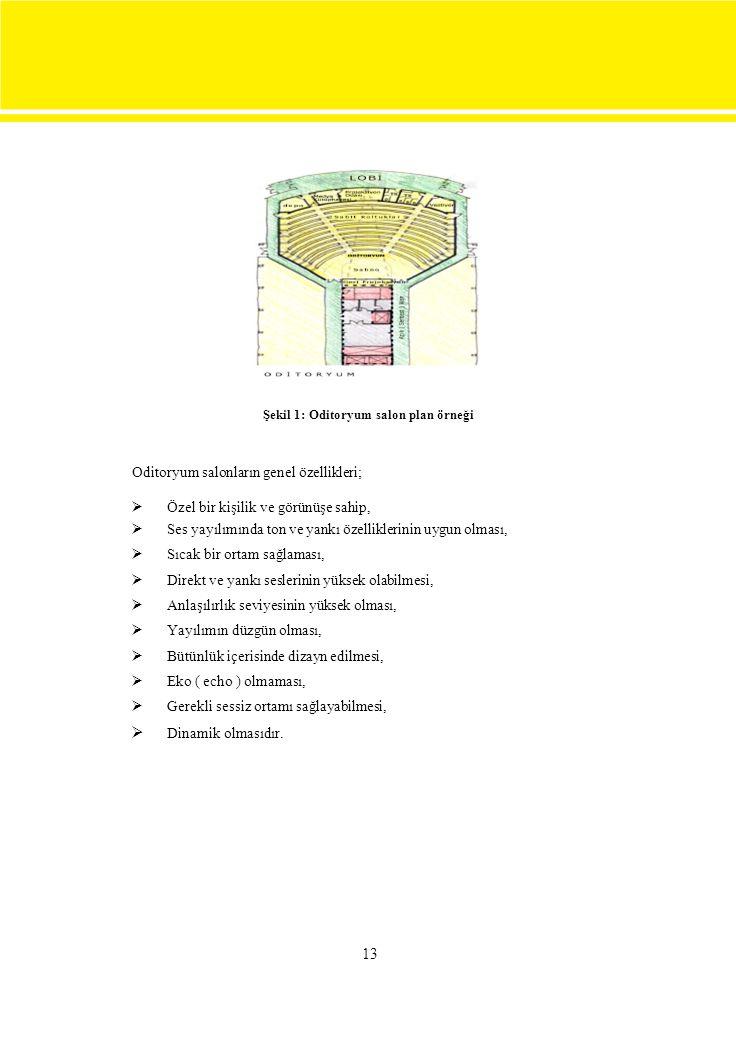 Şekil 1: Oditoryum salon plan örneği Oditoryum salonların genel özellikleri;  Özel bir kişilik ve görünüşe sahip, Ses yayılımında