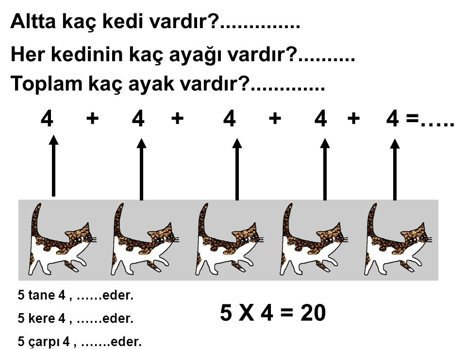Altta kaç kedi vardır?..............Her kedinin kaç ayağı vardır?..........
