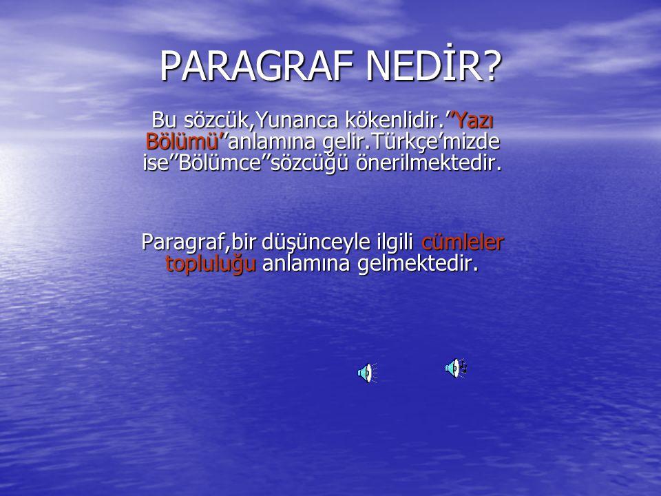 PARAGRAF NEDİR.