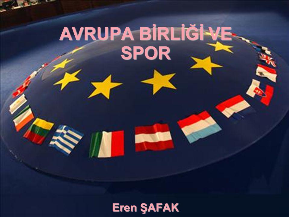Görülmektedir ki, çeşitli sektörlerin gelişimi ve aşırılıklar gibi bir çok konu, Avrupa Birliği çalışmaları içerisinde; halk sağlığı, eğitim, sosyal politikalar, çevre, kişi hakları çerçevesindeki hukuksal düzenlemelerle,çeşitli programlar aracılığıyla veya projeler yapılarak iyileştirilmeye çalışılmaktadır.