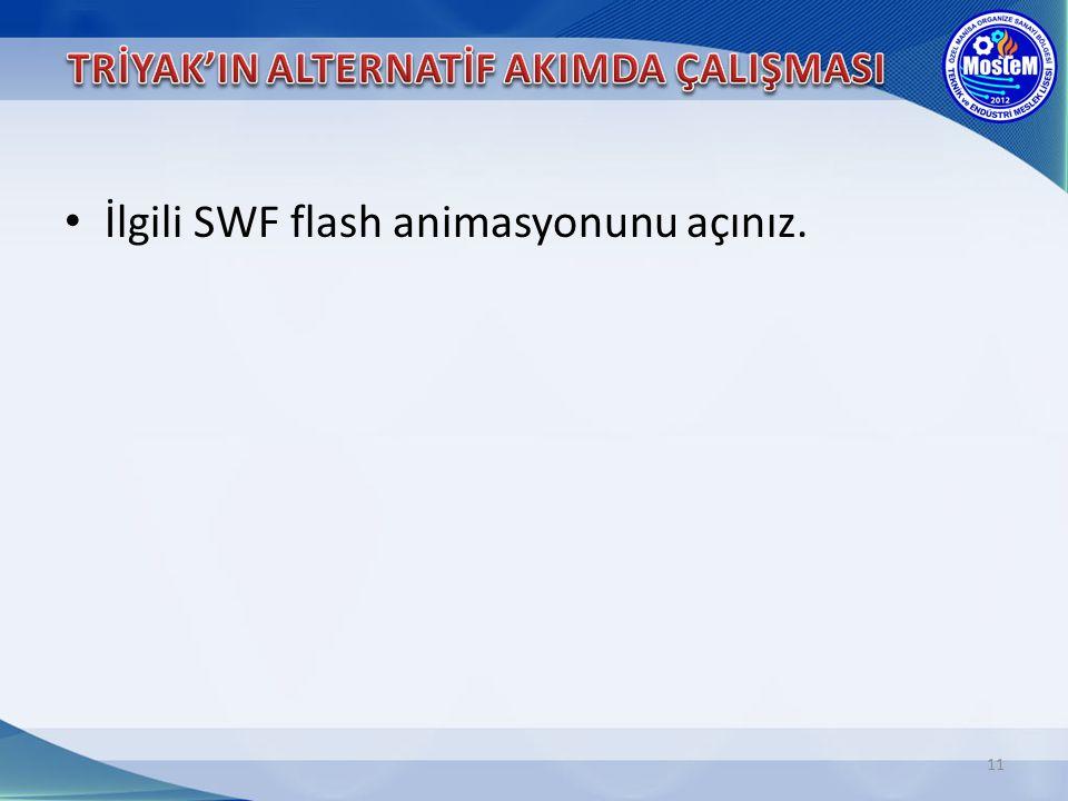 11 İlgili SWF flash animasyonunu açınız.
