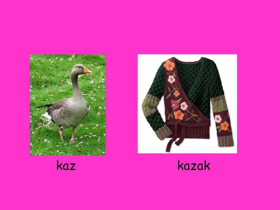 kaz kazak