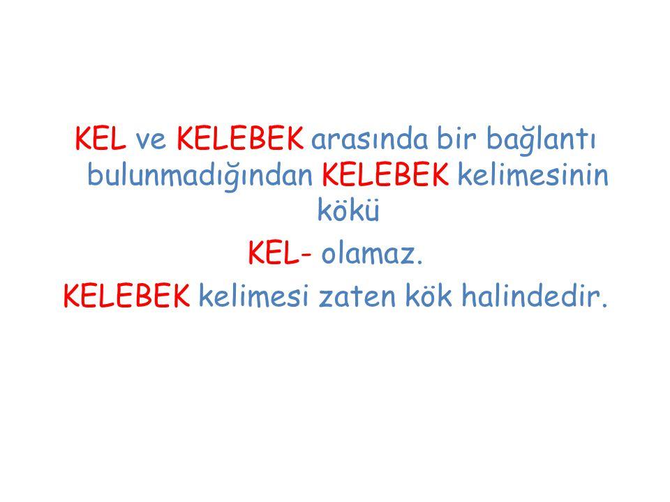 KEL ve KELEBEK arasında bir bağlantı bulunmadığından KELEBEK kelimesinin kökü KEL- olamaz. KELEBEK kelimesi zaten kök halindedir.