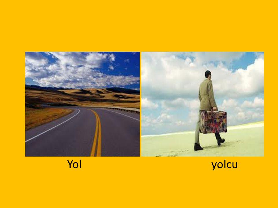Yolyolcu