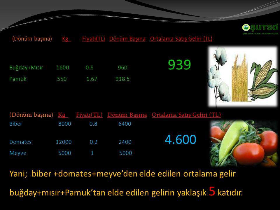 (Dönüm başına) Kg Fiyatı(TL) Dönüm Başına Ortalama Satış Geliri (TL) Buğday+Mısır 1600 0.6 960 939 Pamuk 550 1.67 918.5 (Dönüm başına) Kg Fiyatı(TL) Dönüm Başına Ortalama Satış Geliri (TL) Biber 8000 0.8 6400 Domates 12000 0.2 2400 4.600 Meyve 5000 1 5000 Yani; biber +domates+meyve'den elde edilen ortalama gelir buğday+mısır+Pamuk'tan elde edilen gelirin yaklaşık 5 katıdır.