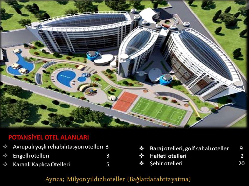 POTANSİYEL OTEL ALANLARI  Avrupalı yaşlı rehabilitasyon otelleri 3  Engelli otelleri 3  Karaali Kaplıca Otelleri 5  Baraj otelleri, golf sahalı oteller 9  Halfeti otelleri 2  Şehir otelleri 20 Ayrıca; Milyon yıldızlı oteller (Bağlarda tahtta yatma)