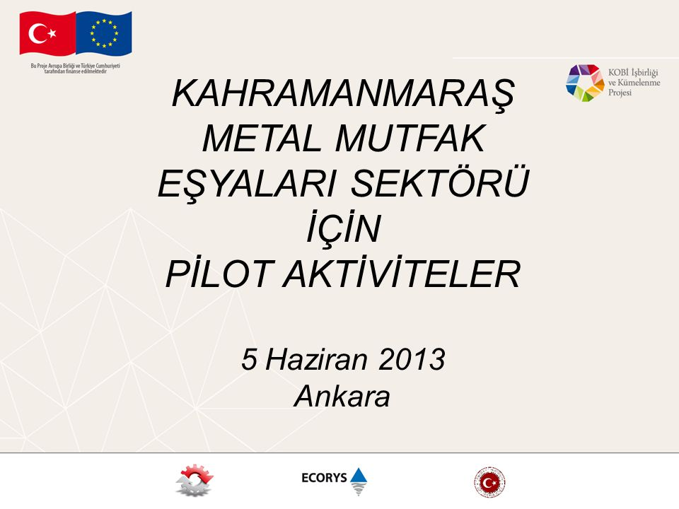 KAHRAMANMARAŞ METAL MUTFAK EŞYALARI SEKTÖRÜ İÇİN PİLOT AKTİVİTELER 5 Haziran 2013 Ankara