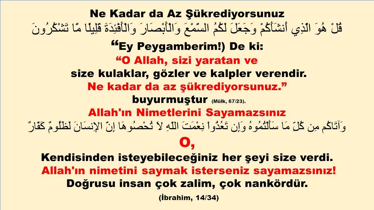 Ne Kadar da Az Şükrediyorsunuz قُلْ هُوَ الَّذِي أَنشَأَكُمْ وَجَعَلَ لَكُمُ السَّمْعَ وَالْأَبْصَارَ وَالْأَفْئِدَةَ قَلِيلًا مَّا تَشْكُرُونَ '' Ey Peygamberim!) De ki: O Allah, sizi yaratan ve size kulaklar, gözler ve kalpler verendir.