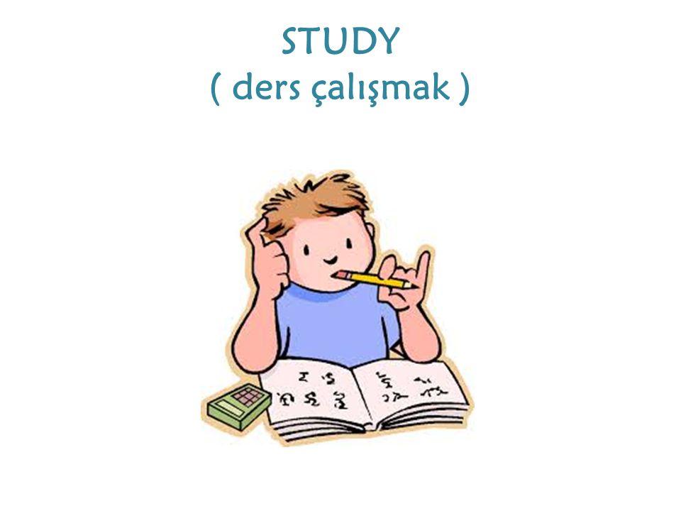 STUDY ( ders çalışmak )