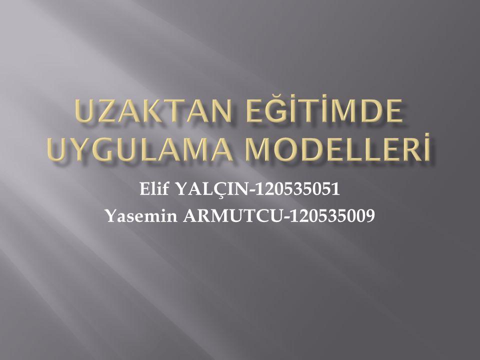 Elif YALÇIN-120535051 Yasemin ARMUTCU-120535009