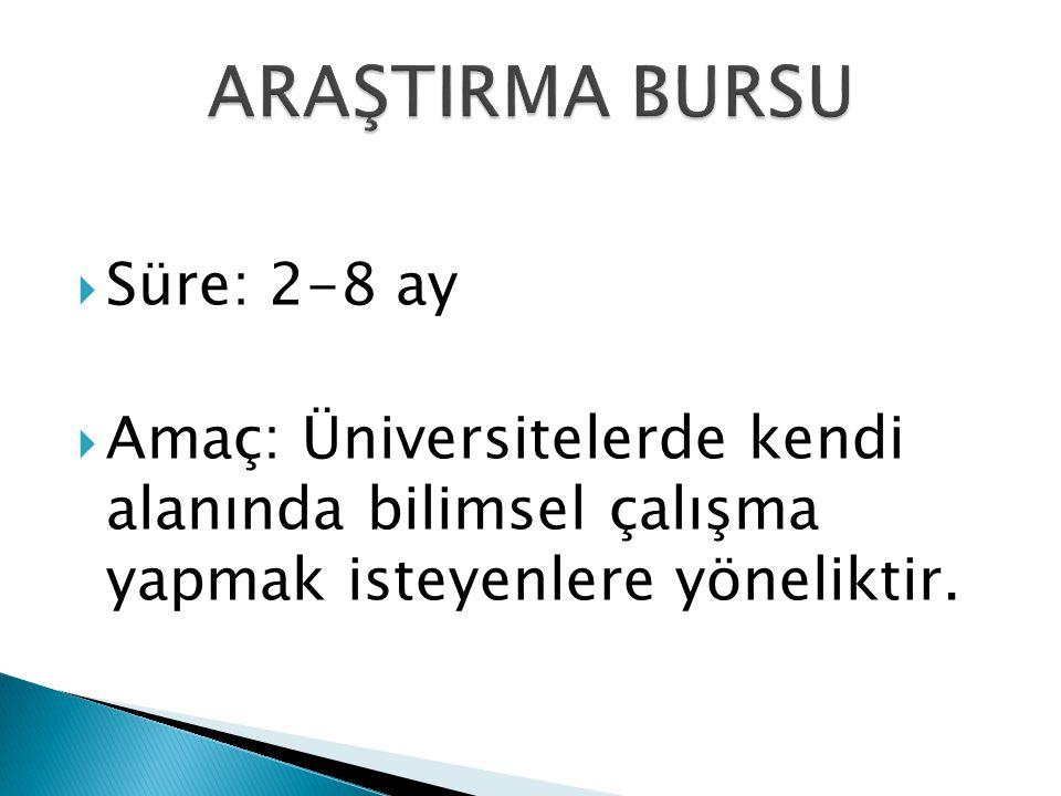  Süre: 2-8 ay  Amaç: Üniversitelerde kendi alanında bilimsel çalışma yapmak isteyenlere yöneliktir.