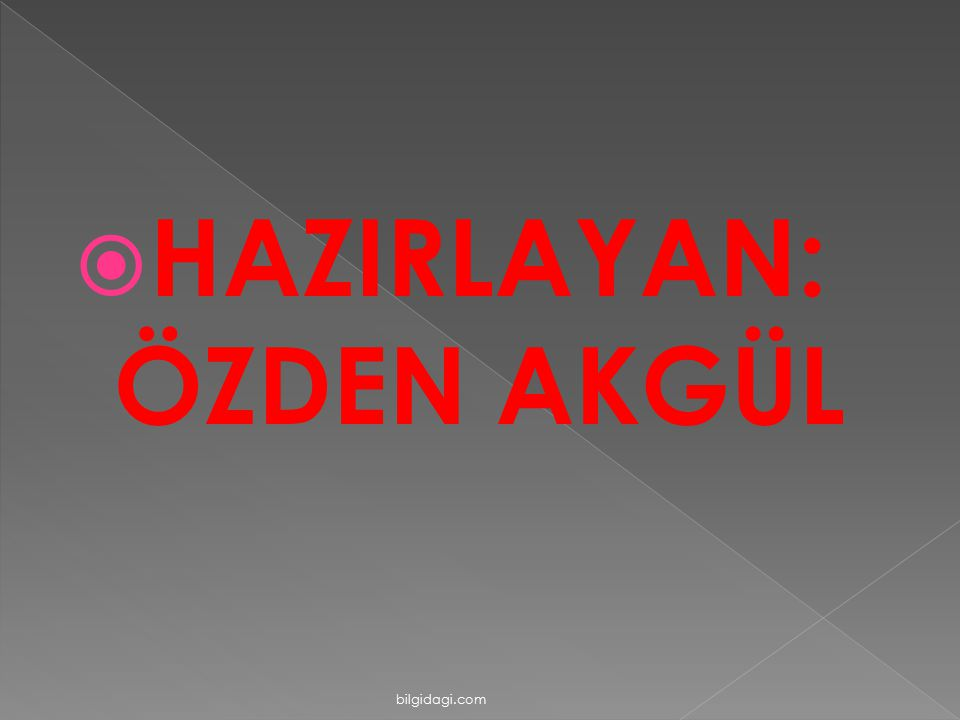  HAZIRLAYAN: ÖZDEN AKGÜL bilgidagi.com