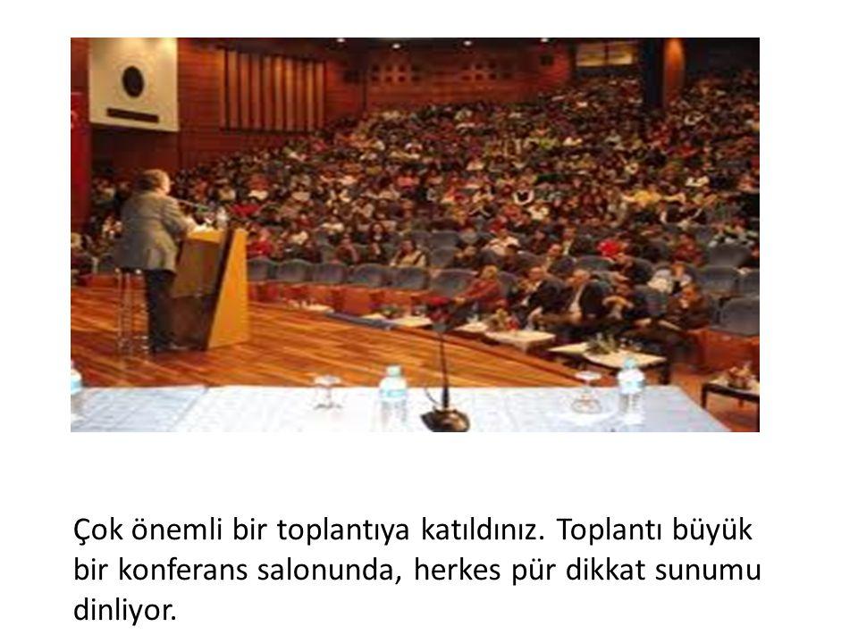 Toplantıdaki konuşan adamlardan birisi bu toplantıyı değerlendirmeye gelmiş yabancı bir üst düzey görevlisi ile onu tercümanı.