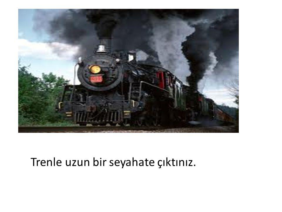 Trenle uzun bir seyahate çıktınız.