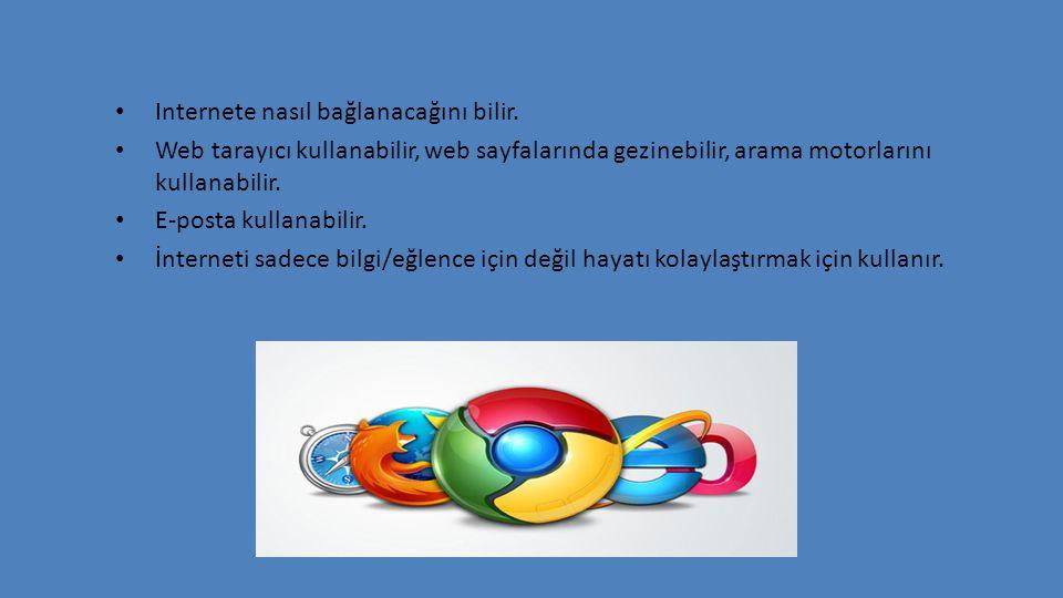 Internete nasıl bağlanacağını bilir. Web tarayıcı kullanabilir, web sayfalarında gezinebilir, arama motorlarını kullanabilir. E-posta kullanabilir. İn