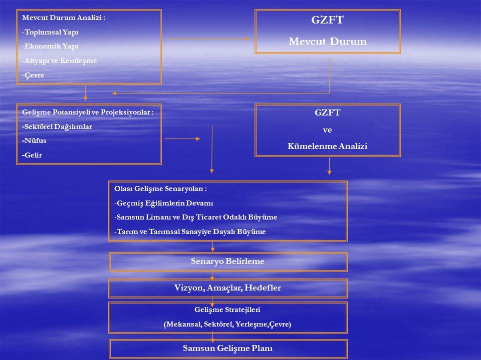 Mevcut Durum Analizi : -Toplumsal Yapı -Ekonomik Yapı -Altyapı ve Kentleşme -Çevre GZFT Mevcut Durum Gelişme Potansiyeli ve Projeksiyonlar : -Sektörel
