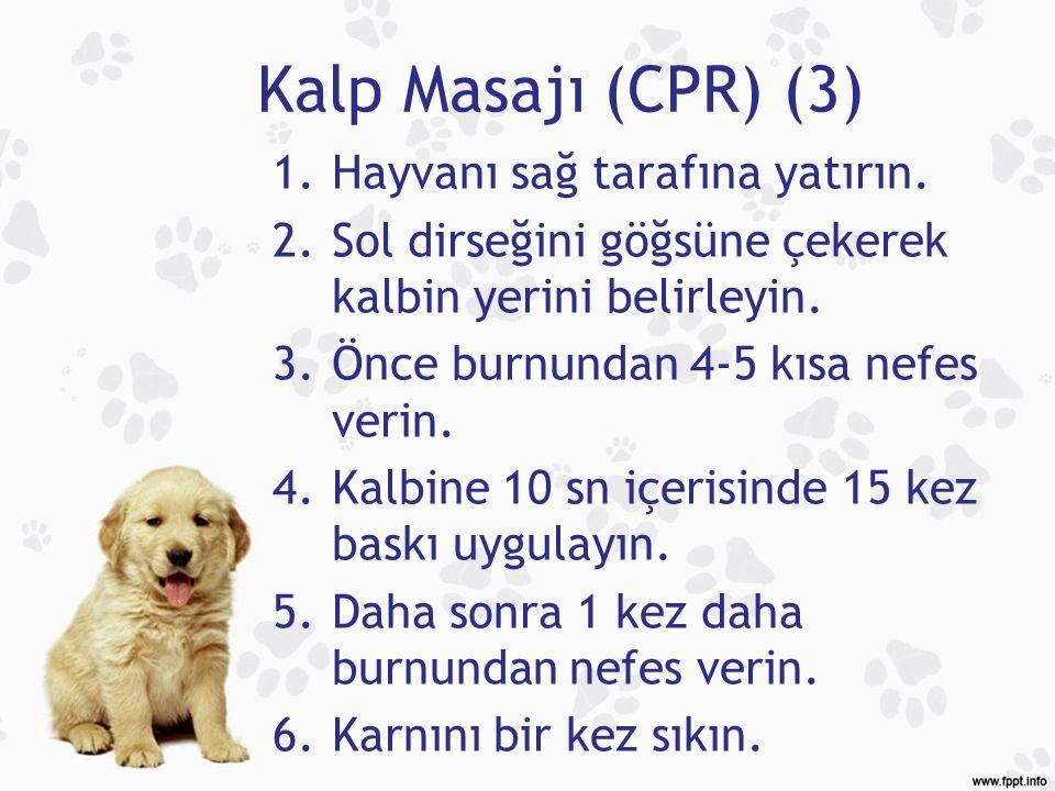 Kalp Masajı (CPR) (3) 1.Hayvanı sağ tarafına yatırın. 2.Sol dirseğini göğsüne çekerek kalbin yerini belirleyin. 3.Önce burnundan 4-5 kısa nefes verin.