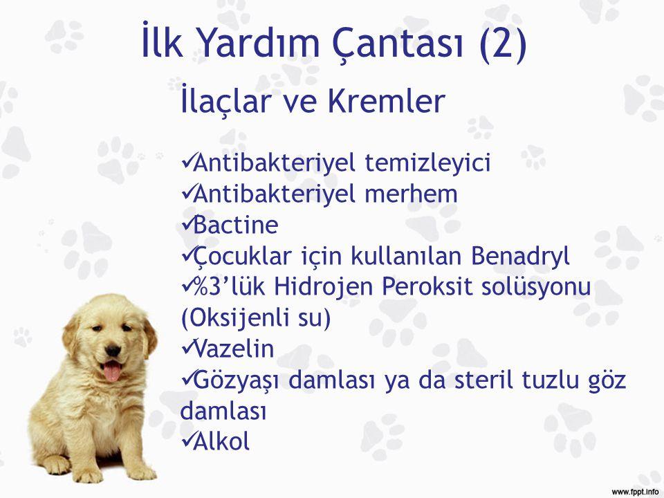 İlk Yardım Çantası (2) İlaçlar ve Kremler Antibakteriyel temizleyici Antibakteriyel merhem Bactine Çocuklar için kullanılan Benadryl %3'lük Hidrojen P