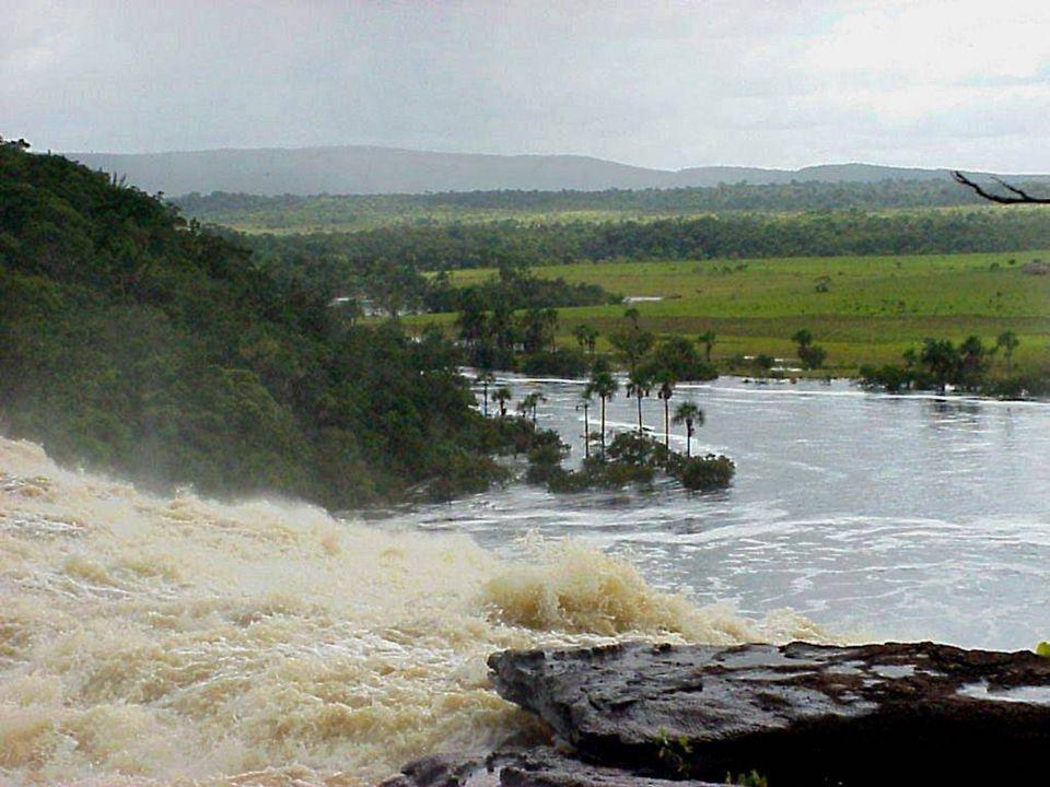 Canaima: Kayıp dünya nehir gezisi Kristof Kolomb 1498 yılında Venezuella nın kıyı şeridini gördüğünde, yeryüzündeki cennet diye adlandırmıştı.