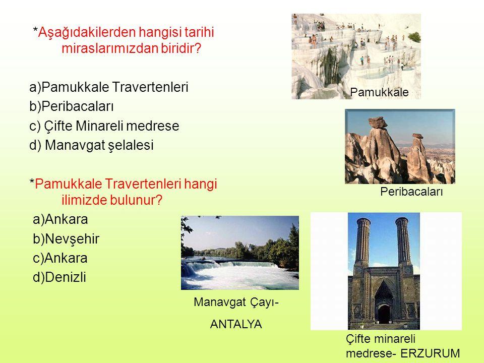 8- *Aşağıdakilerden hangisi tarihi mekanlarımızdan biri değildir.