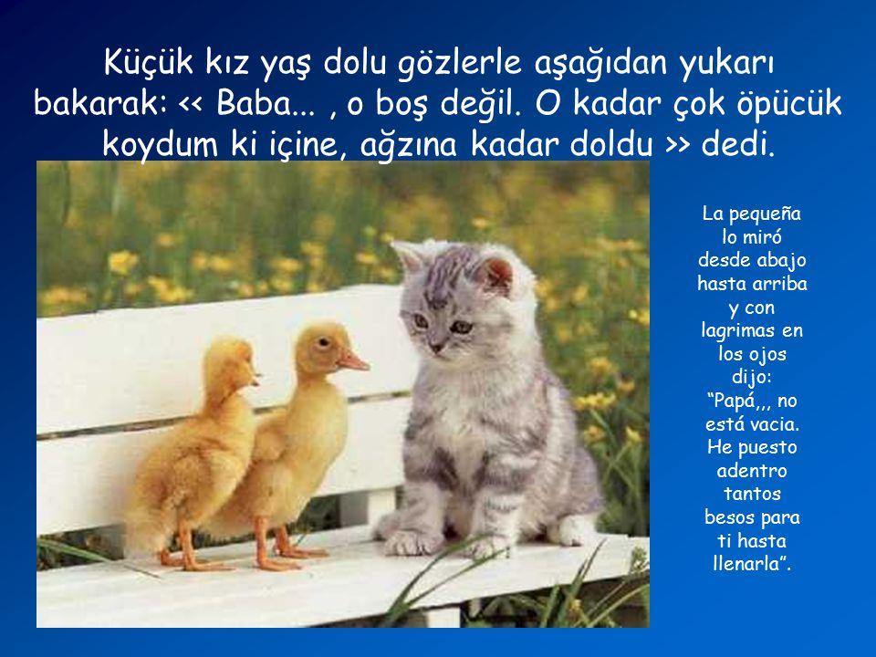 """Çok kaba bir şekilde: > Le dijo de modo brusco: """"No sabes que cuando haces un relago se supone que en la caja haya alguna cosa?""""."""