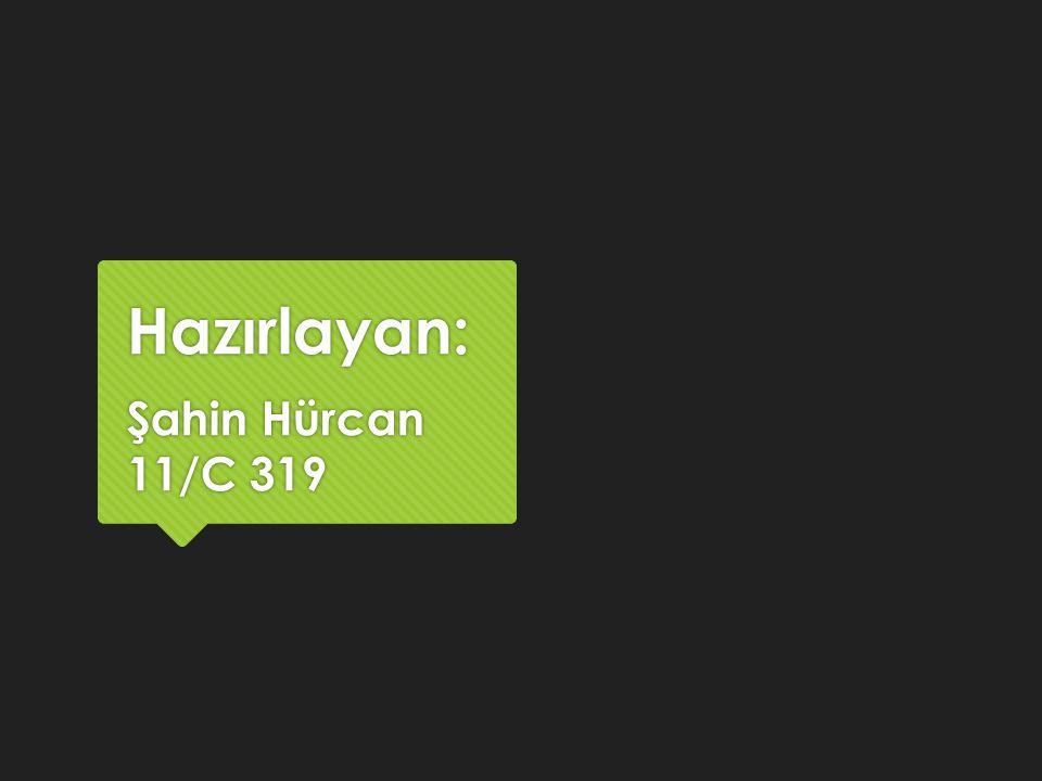 Hazırlayan: Şahin Hürcan 11/C 319