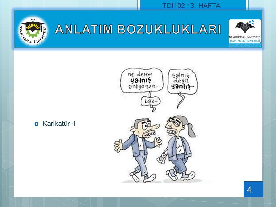  Karikatür 1 TDI102 13. HAFTA 4
