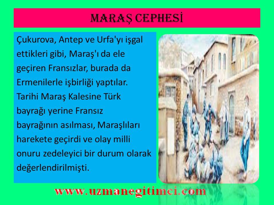 B-) GÜNEY CEPHES İ Fransızların Adana yı, İngilizlerin ve Fransızların beraberce Urfa, Maraş ve Antep i işgal etmeleri halk arasında korku, nefret ve endişe oluşturmuştu.