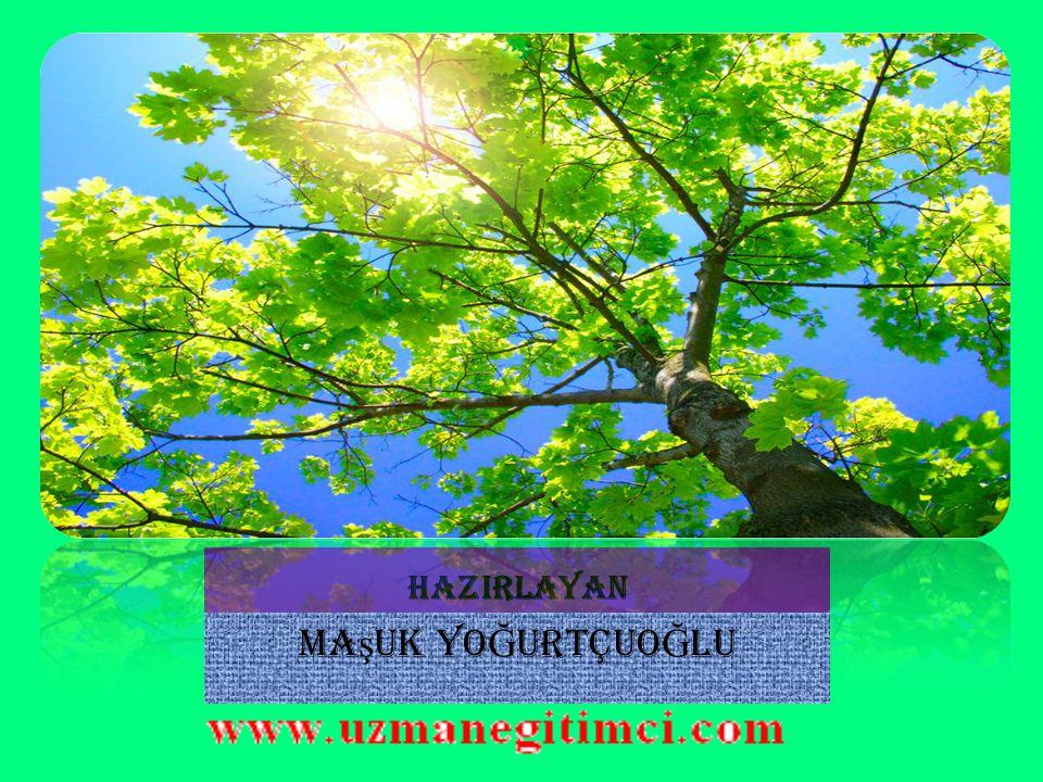 İ ZM İ R' İ N KURTULU Ş U 9 EYLÜL 1922  Bu takip ve kovalama 9 Eylülde İzmir'de sona erdi.