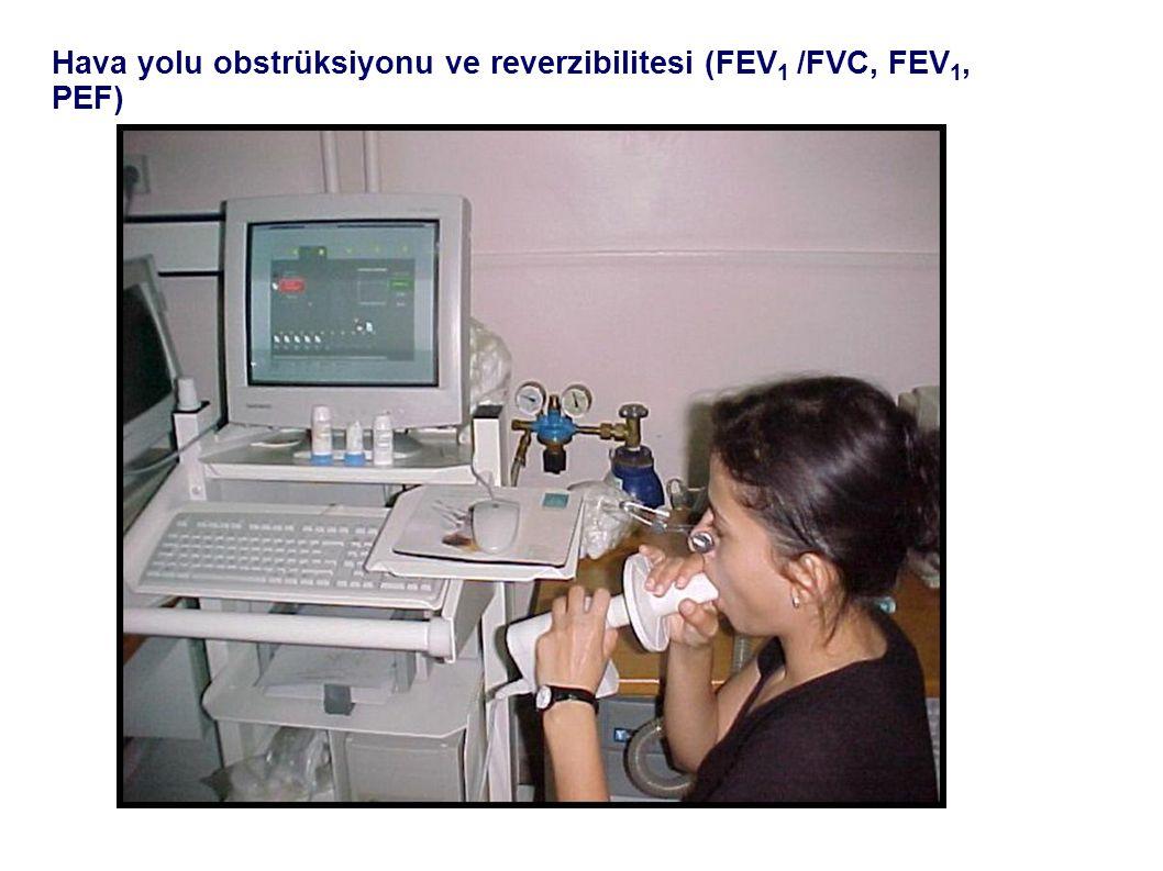 Hava yolu obstrüksiyonu ve reverzibilitesi (FEV 1 /FVC, FEV 1, PEF)