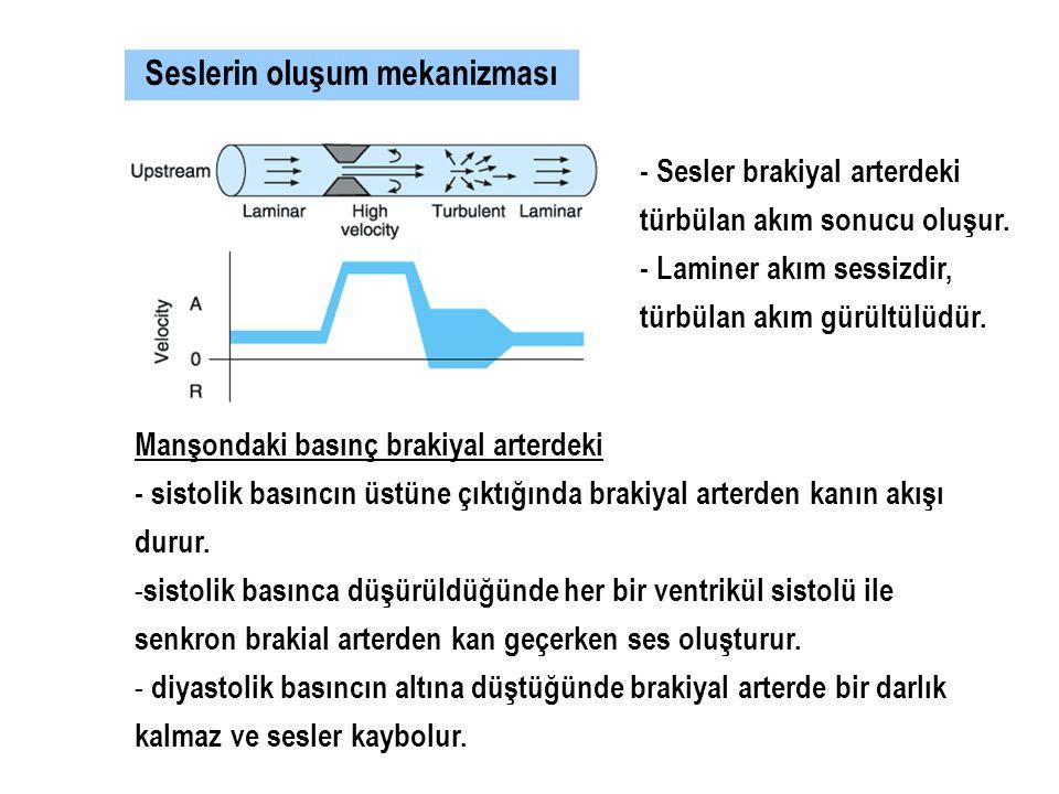 Seslerin oluşum mekanizması - Sesler brakiyal arterdeki türbülan akım sonucu oluşur. - Laminer akım sessizdir, türbülan akım gürültülüdür. Manşondaki