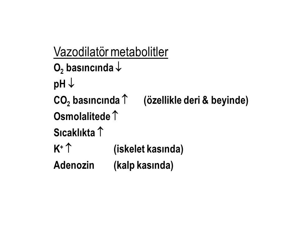 Vazodilatör metabolitler O 2 basıncında  pH  CO 2 basıncında  (özellikle deri & beyinde) Osmolalitede  Sıcaklıkta  K +  (iskelet kasında) Adenoz
