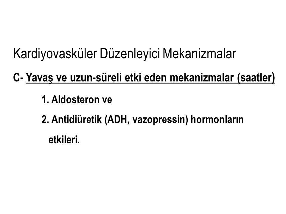Kardiyovasküler Düzenleyici Mekanizmalar C- Yavaş ve uzun-süreli etki eden mekanizmalar (saatler ) 1. Aldosteron ve 2. Antidiüretik (ADH, vazopressin)