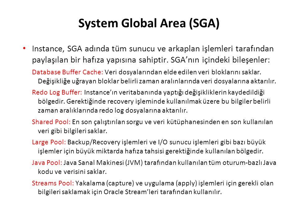 System Global Area (SGA) Instance, SGA adında tüm sunucu ve arkaplan işlemleri tarafından paylaşılan bir hafıza yapısına sahiptir. SGA'nın içindeki bi