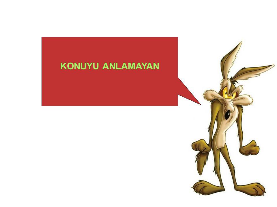 KONUYU ANLAMAYAN