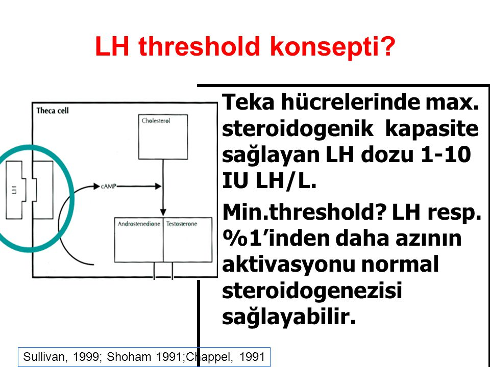 LH threshold Hipogonadotropik hipogonadizm olgularında E2 sentezi için LH gerekli Minimum effektif doz – threshold – nedir.