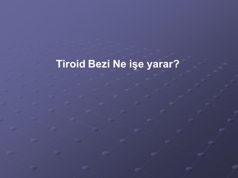 Tiroid Bezi Ne işe yarar?