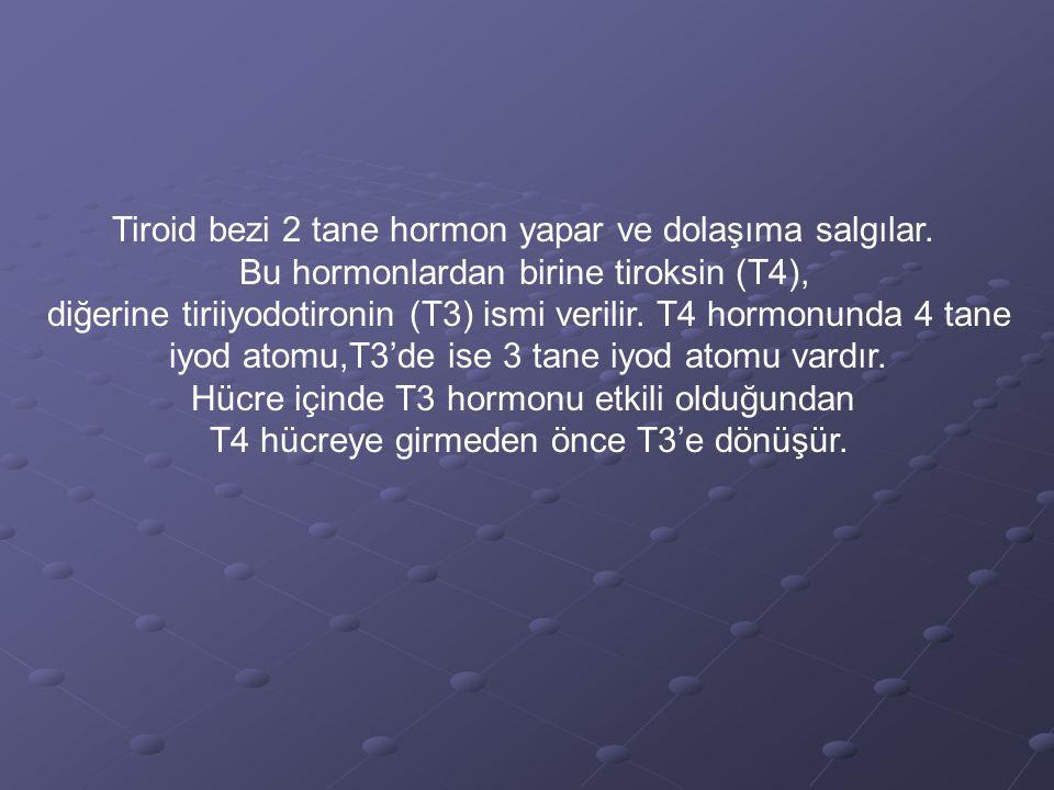 Tiroid bezi 2 tane hormon yapar ve dolaşıma salgılar. Bu hormonlardan birine tiroksin (T4), diğerine tiriiyodotironin (T3) ismi verilir. T4 hormonunda