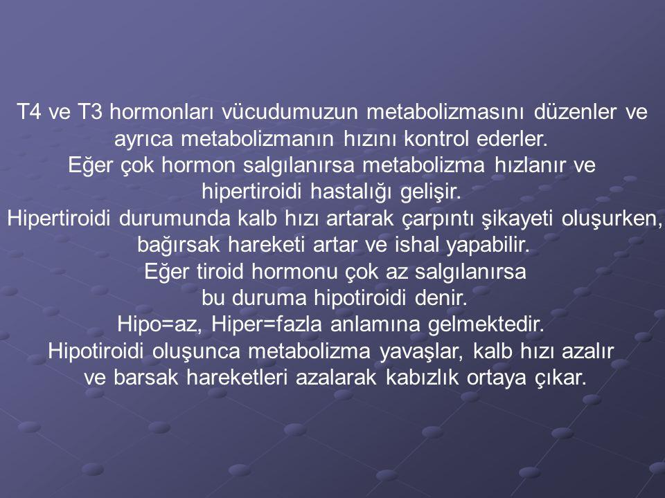 T4 ve T3 hormonları vücudumuzun metabolizmasını düzenler ve ayrıca metabolizmanın hızını kontrol ederler. Eğer çok hormon salgılanırsa metabolizma hız