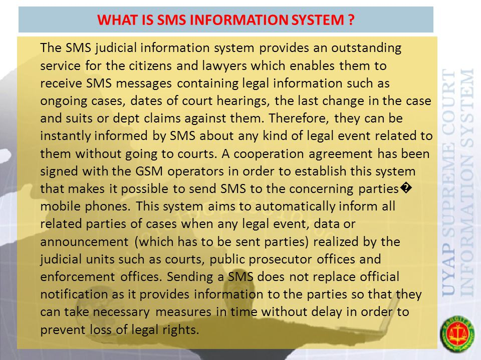 WHAT IS SMS INFORMATION SYSTEM .