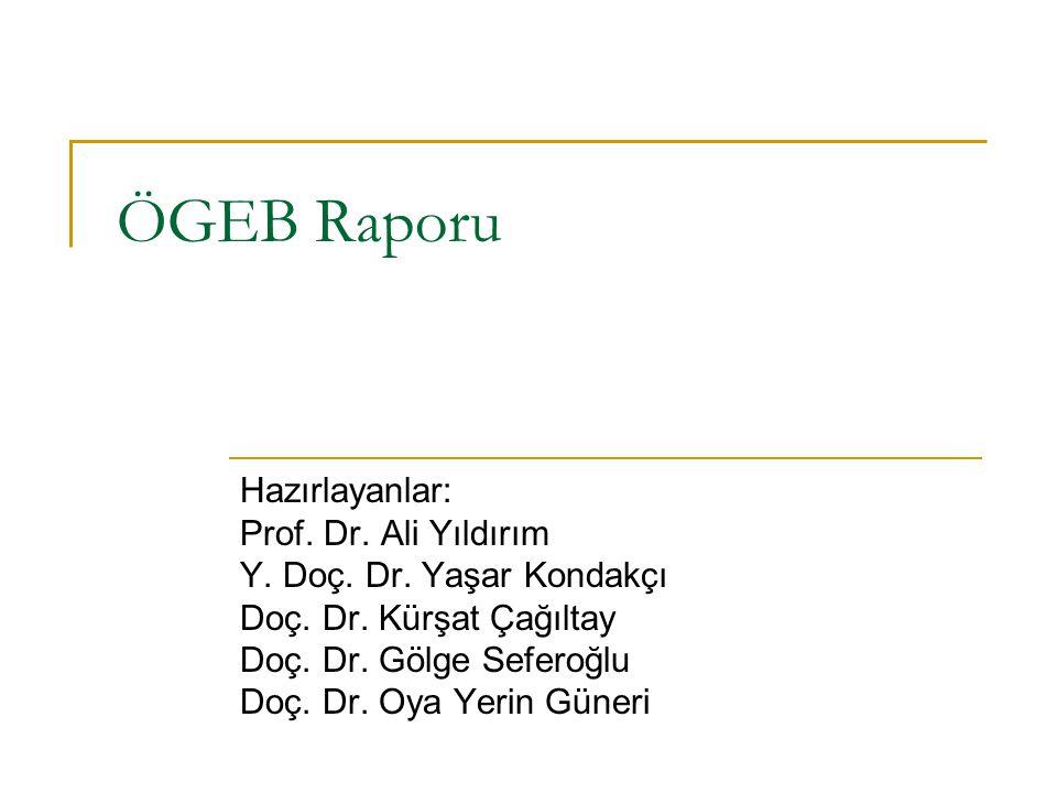 ÖGEB Raporu Hazırlayanlar: Prof. Dr. Ali Yıldırım Y. Doç. Dr. Yaşar Kondakçı Doç. Dr. Kürşat Çağıltay Doç. Dr. Gölge Seferoğlu Doç. Dr. Oya Yerin Güne