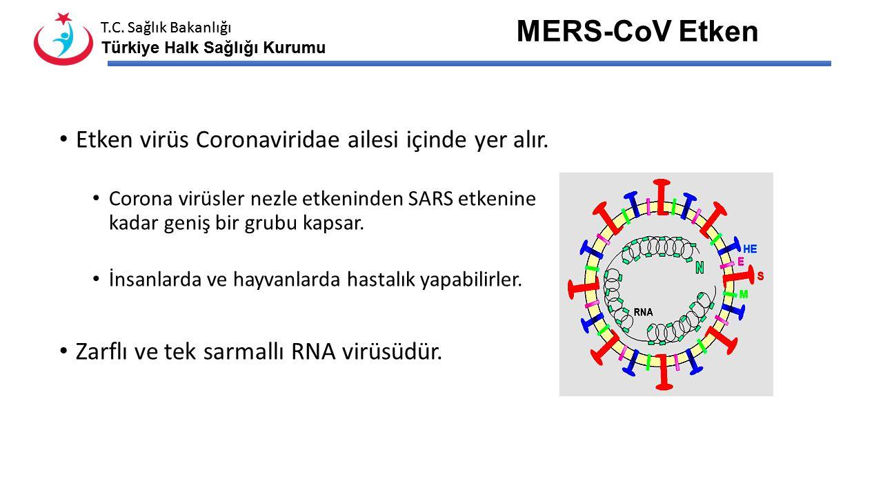 T.C. Sağlık Bakanlığı Türkiye Halk Sağlığı Kurumu T.C. Sağlık Bakanlığı Türkiye Halk Sağlığı Kurumu Toplam Vaka: 896 Toplam Ölüm: 357 14 Ekim 2014 ECD