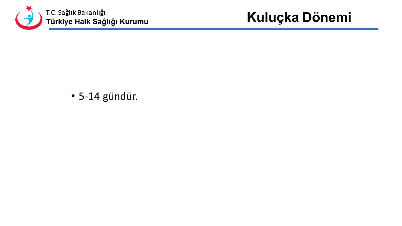 T.C. Sağlık Bakanlığı Türkiye Halk Sağlığı Kurumu T.C. Sağlık Bakanlığı Türkiye Halk Sağlığı Kurumu İnsandan İnsana Bulaş İnsandan insana bulaşma; Sol