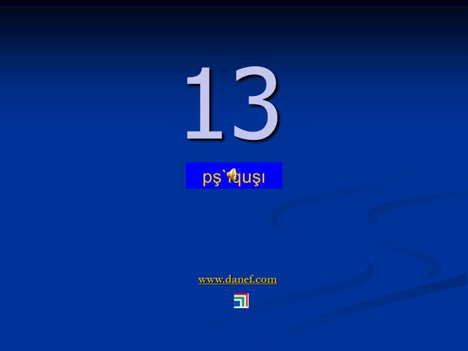 www.danef.com 12 12 pş`ıqu ṫ `u